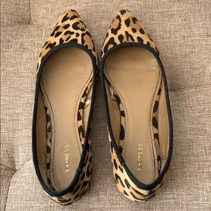 Express leopard print flats